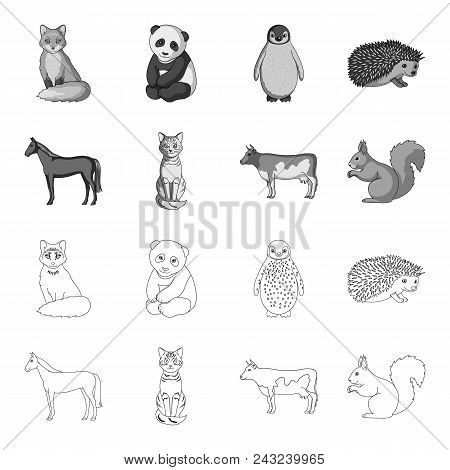 Horse, Cow, Cat, Squirrel And Other Kinds Of Animals.animals Set Collection Icons In Outline, Monoch