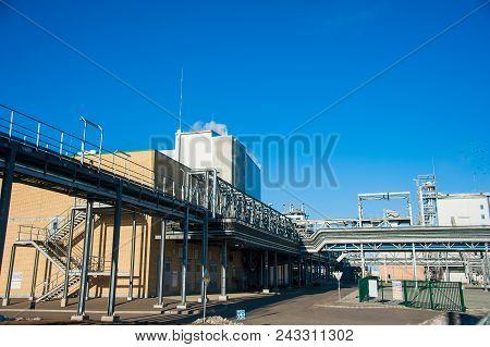 Grain Processing Facilit