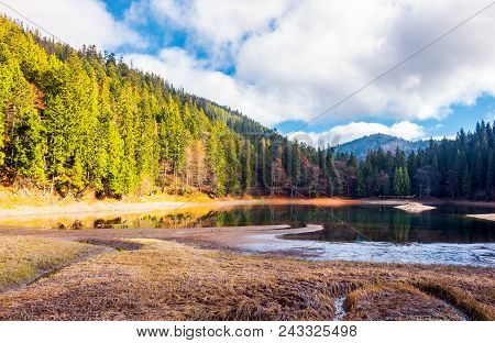 Beautiful Scenery Around The Synevyr Lake. Tall Trees Around The Body Of Water In Mountains. Lovely