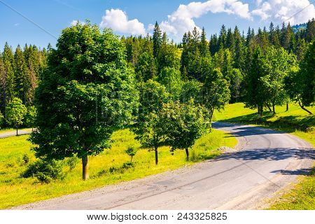 Serpentine Turnaround On Forested Hill. Lovely Summer Scenery In Mountains. Travel Concept