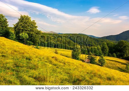 Hayshed On A Meadow Among The Beech Forest. Beautiful Evening Scenery Of Carpathian Mountains Ukrain