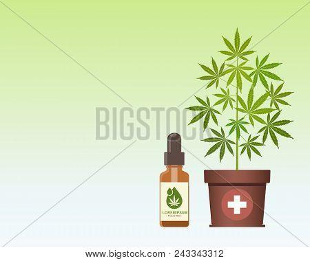 Marijuana Plant And Dropper With Cbd Oil. Cannabis Oil. Medical Marijuana. Cbd Oil Hemp Products. Bo