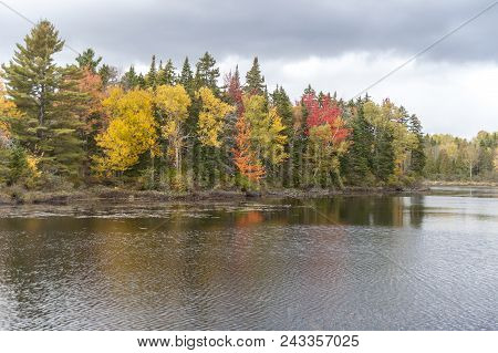 Colorful Shoreline Of The Androscoggin River In Early October
