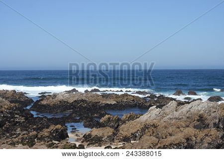 This Is An Image Of The Coast Of The Asilomar State Beach Taken On A Clear Sunny Day In Pacific Grov