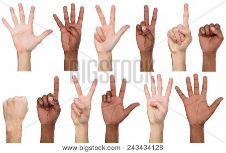 Set Of White And African-american Male Hand Show Figures, Count One, Two, Three, Four, Five. Isolate