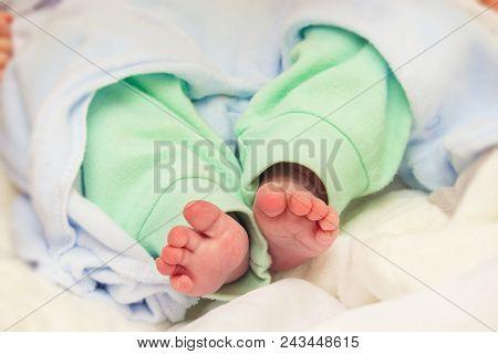 Little Legs Of A Newborn Infant Baby