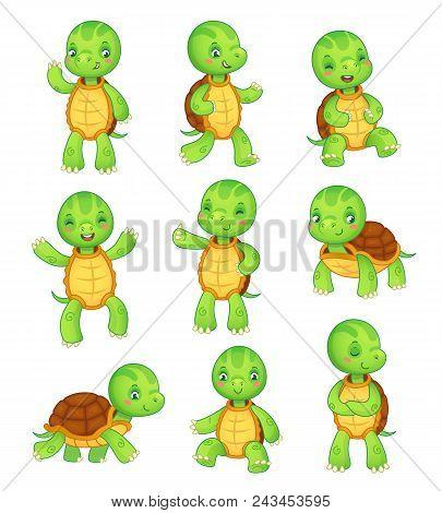 Cartoon Turtle. Cute Fun Kids Turtles, Wild Animals Character Set. Tortoise Colorful Isolated Charac