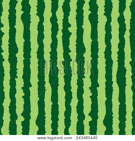 Watermelon Seamless Pattern. Green Stripes Of Watermelon Background. Vector Illustration