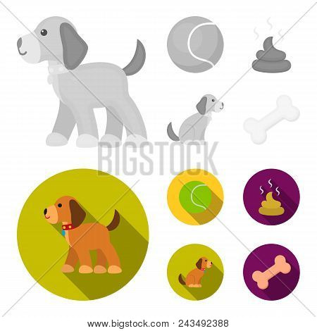 Dog Sitting, Dog Standing, Tennis Ball, Feces. Dog Set Collection Icons In Monochrome, Flat Style Ve