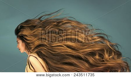 Sensual Sexy Woman. Sensual Sexy Woman. Hairdresser Salon And Barber. Beauty And Fashion. Hair Style