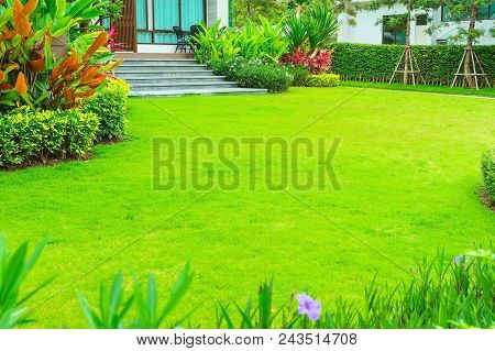 Modern House With Beautiful Landscaped Front Yard, Lawn And Garden Blur Background., The Design Conc