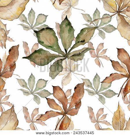 Autumn Chestnut Leaves. Leaf Plant Botanical Garden Floral Foliage. Seamless Background Pattern. Aqu