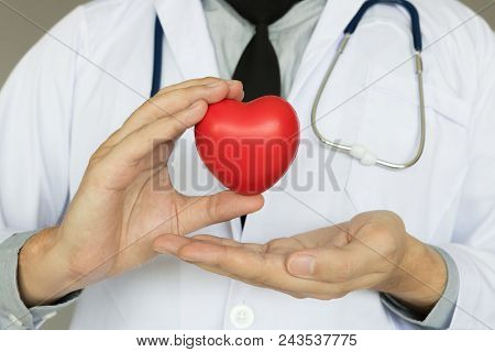 Doctor Holding Heart With Medical Healthcare Concept.