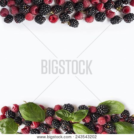 Black And Red Berries Isolated On White. Ripe Blackberries, Raspberries  And Basil Leaves On White B