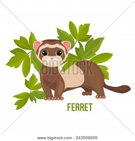 Ferret Animal With Wide Open Eyes In Green Leaves Vector Illustration Isolated On White. Polecat Toy