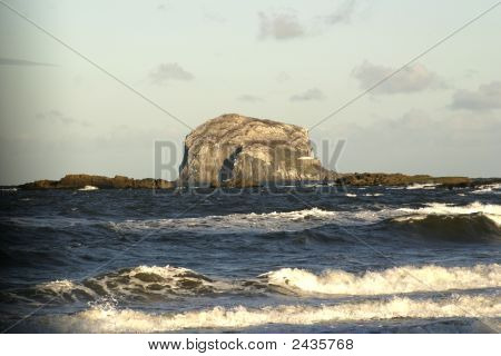 The Bass Rock, Scotland