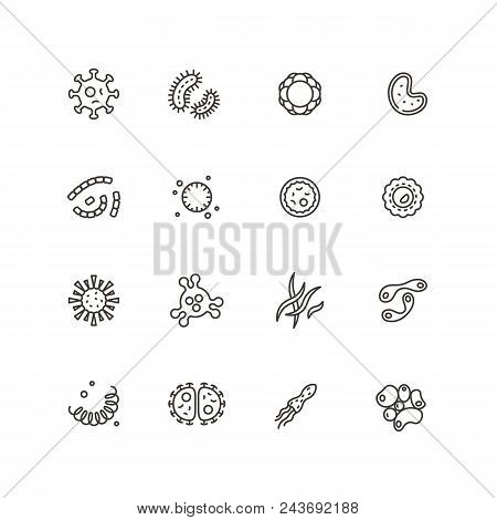 Microbes, Virus And Pathogen Line Icons. Bacteriology Hygiene And Infection Outline Vector Isolated