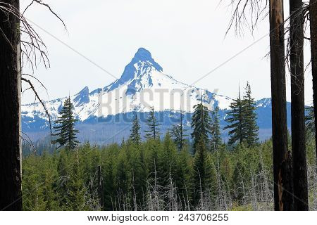 Mount Washington In Beautiful, Green Western Oregon.