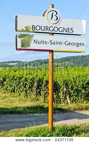 Nuits-Saint-Georges, Burgundy, France