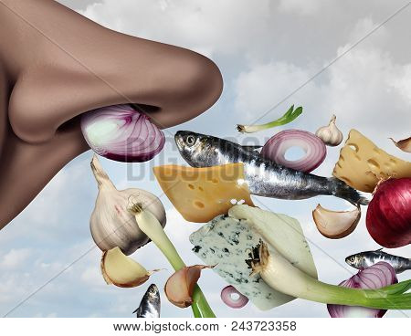 Stinky Smell And Smelly Food Concept As Strong Smell Ingredients As Garlic Onions Fish And Cheese Wi