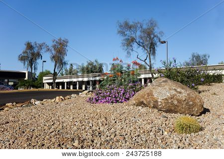 Desert Style Landscaping With Native Drought Tolerant Plants And Cacti Around Business Park In Capit