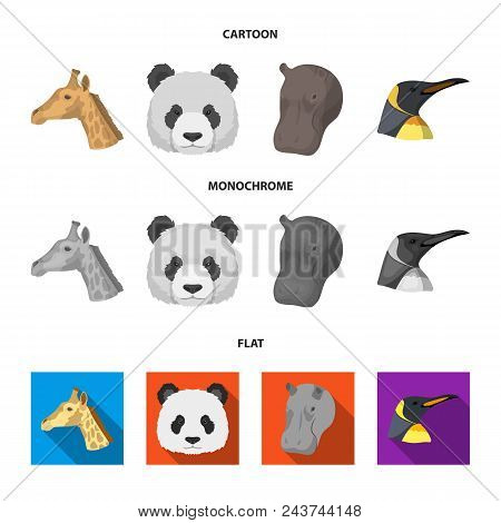 Panda, Giraffe, Hippopotamus, Penguin, Realistic Animals Set Collection Icons In Cartoon, Flat, Mono