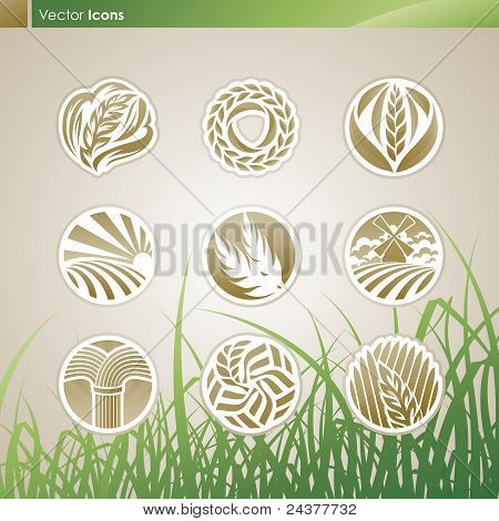 Wheat And Rye. Icon Set.