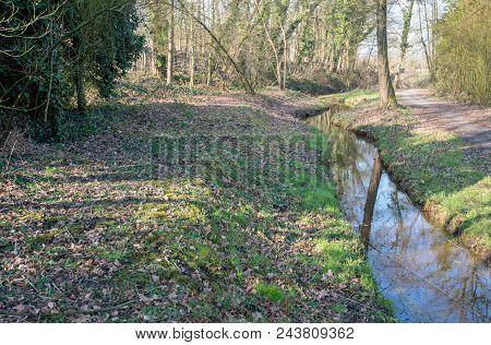 Small Winding Stream With A Reflecting Water Surface. The Stream Is Situated In A Dutch Park. It Is