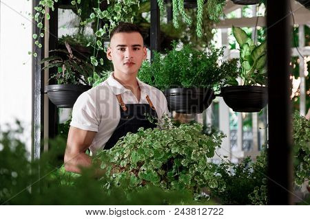 Young Smiling Man Florist Working In The Garden Or Greenhouse. An Attractive Guy Makes Design Of An