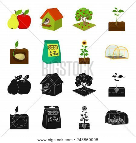 Company, Ecology, And Other  Icon In Black, Cartoon Style. Husks, Fines, Garden Icons In Set Collect