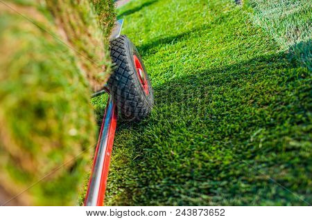 Creating New Grass Field In The Garden. Natural Turf Grass On The Moving Cart Closeup Photo. Landsca