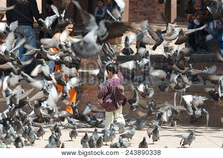 Kathmandu, Nepal, 2013-02-26: Little Girl Startles Numerous Pigeons At The Ancient Square