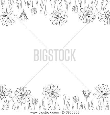 Vector Outline Floral Border. Floral Frame.  Floral Decoration.