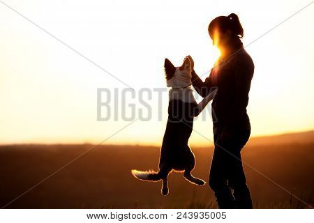 Backlight Silhouette Of A Woman With Her Jumping Dog, Playing On Sunset Or Sunrise, Copyspace