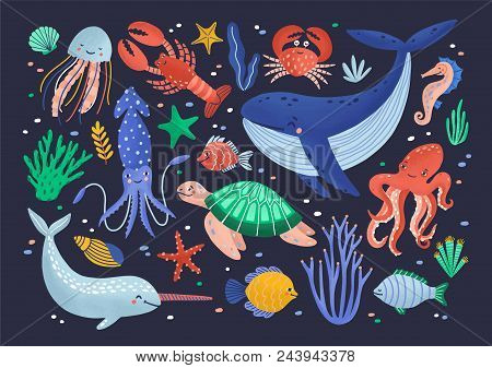 Collection Of Cute Funny Smiling Marine Animals - Mammals, Reptiles, Molluscs, Crustaceans, Fish And
