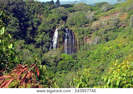 Opeakaa Falls Is Part Of The North Branch Of The Wailua River, The Falls Are 151 Foot With A Span Of