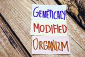 GMO or geneticaly modified organizm handwritten sign on the white paper with retro wooden background. Messages about health and gmo. Agriculture business conceptual sign. poster