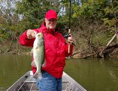 experienced senior angler holding large mouth bass closeup poster