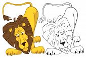 Surprised lion. Color and outline vector illustrations poster