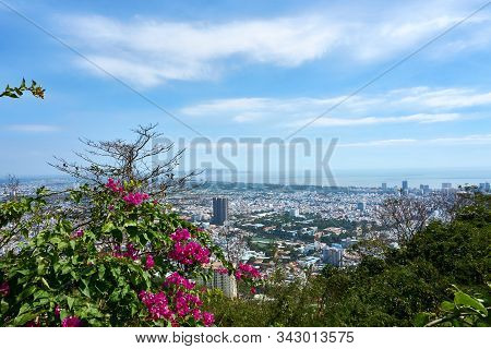 Vung Tau, Vietnam - December.24.2020: View Over Vung Tau With Pink Flower In Foreground.