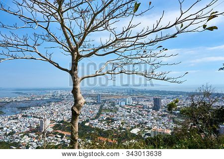 Vung Tau, Vietnam - December.24.2020: View Over Vung Tau With Tree In Foreground