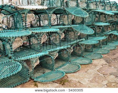 Crab Traps