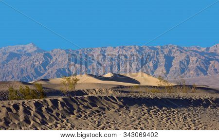 Death Valley Sand Dunes, Death Valley National Park