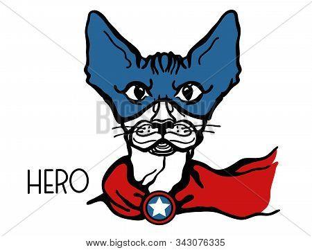 Cat Hero Portrait With Mask And Hero Star. Vector Superhero Cat Handdrawn Graphic Illustration Isola