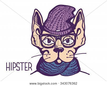 Cat Hipster Style. Vector Color Printable Handdrawn Illustration Isolated On White.