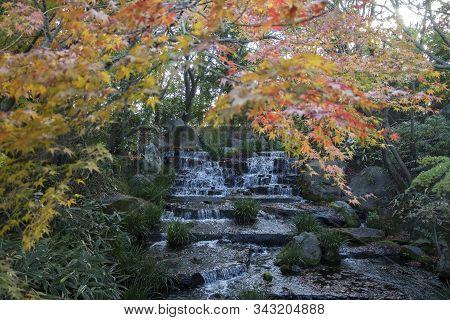 Waterfall And Red Autumn Leave In Koko-en Garden In Himeji, Japan