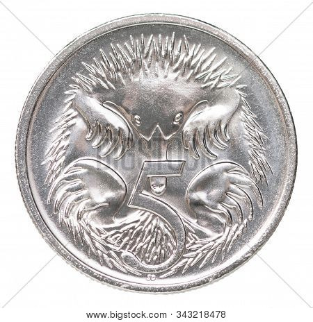 Five Australian Cents Coin Depicting A Echidna Mammal Isolated On White Background