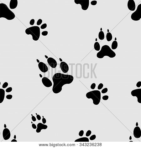 Animal Tracks Seamless Pattern. Dog Or Cat Paws Print Vector Isolated On White Background. Trail Foo