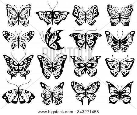 Butterfly. Stylized Exotic Butterflies Silhouettes With Openwork Wings, Summer Flying Insects. Roman
