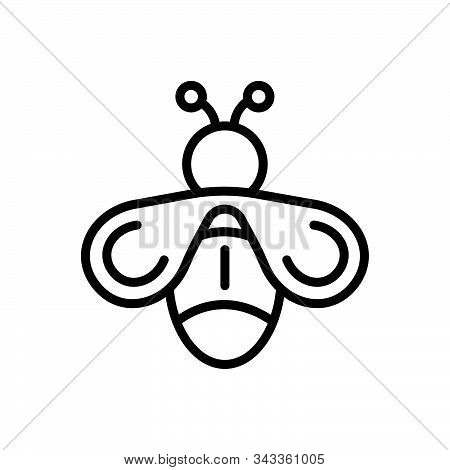 Black Line Icon For Fly Drake Blowfly Housefly Insect Dross Bee